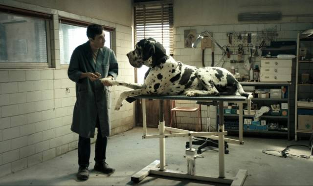 """Dogman"" – special screening at KPB"