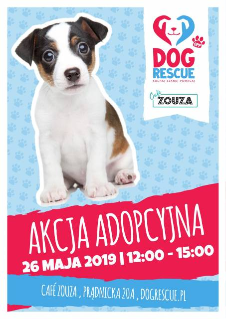 Zaadoptuj psiaka z Dog Rescue w Cafe Zouza